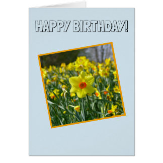 Happy Birthday! Yellow orange Daffodils 01.0 Card