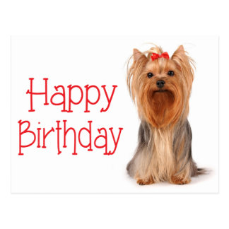 Happy Birthday Yorkshire Terrier Puppy Postcard