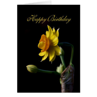 Happy Birtrhday - Yellow Daffodil Bloom Card
