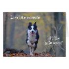 Happy Border Collie dog birthday card