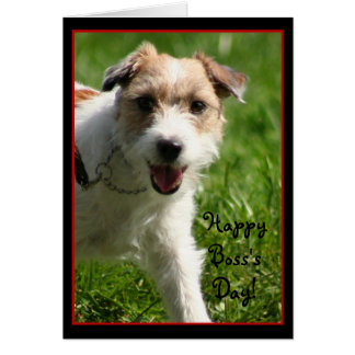 Happy Boss's Day Jack Russell Terrier card