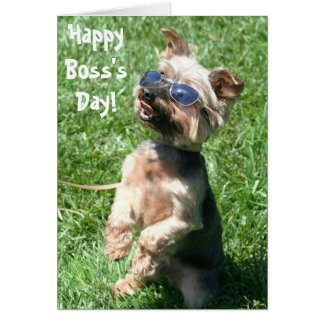 Happy Boss's Day yorkshire terrier greeting card