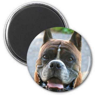 Happy Boxer magnet