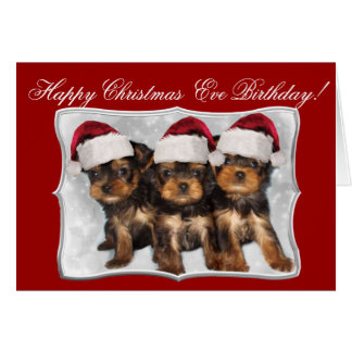 Happy Christmas  Eve Birthday Yorkshire Terriers Card