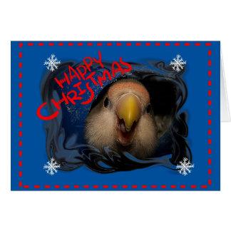 Happy Christmas Love Bird Card