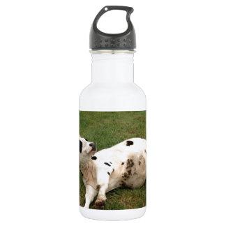 happy cow organic farm 532 ml water bottle