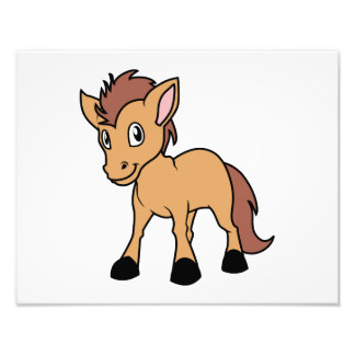 Happy Cute Brown Foal Little Horse Pony Colt Photo Print
