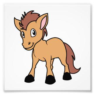 Happy Cute Brown Foal Little Horse Pony Colt Photo Print