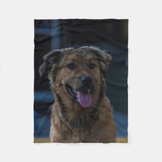 Happy Dog Blanket