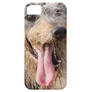 Happy dog on a beach iPhone 5 case