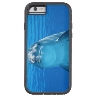 Happy Dolphin Tough Xtreme iPhone 6 Case