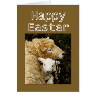 Happy Easter  Blessings - Ewe and Lamb Card