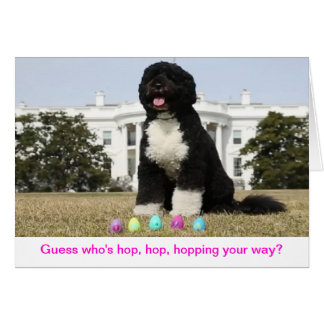 Happy Easter - Bo Obama Greeting Card