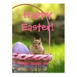 Happy Easter Little Chipmunk 2 Postcard