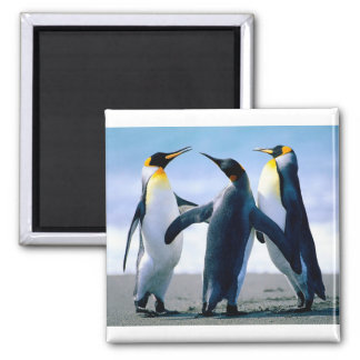 Happy Feet Square Magnet