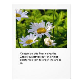 Happy flowers daisies in the garden fun art photo 21.5 cm x 28 cm flyer