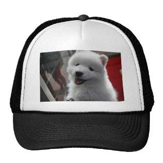Happy Fluffy White Dog Hat