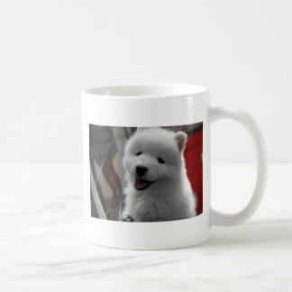 Happy Fluffy White Dog Coffee Mugs
