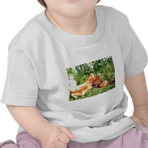 Happy Free range ex-battery chickens T Shirt