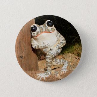 Happy frog with big eyes 6 cm round badge