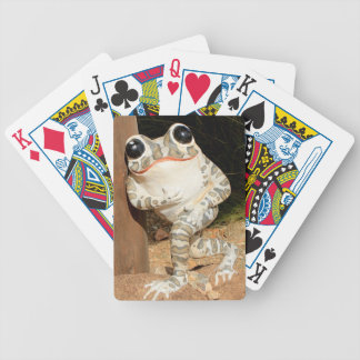 Happy frog with big eyes bicycle playing cards