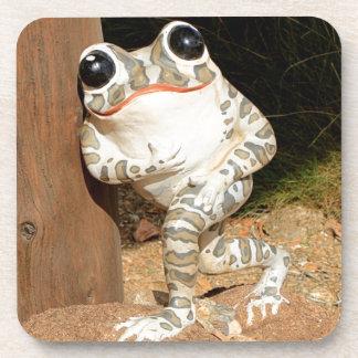 Happy frog with big eyes coaster