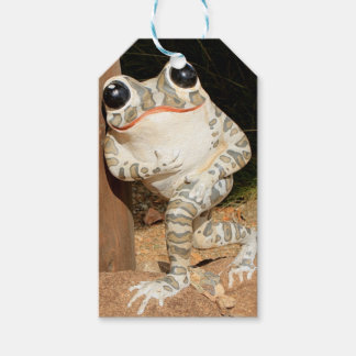Happy frog with big eyes gift tags