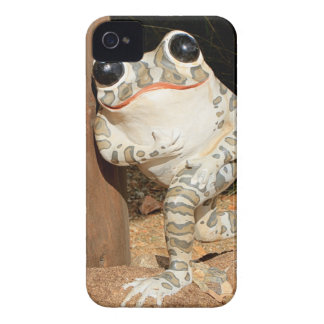 Happy frog with big eyes iPhone 4 case