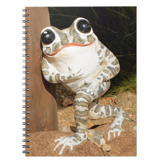 Happy frog with big eyes notebook