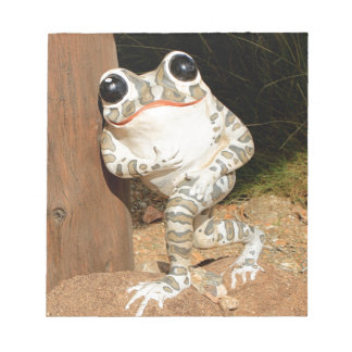Happy frog with big eyes notepad