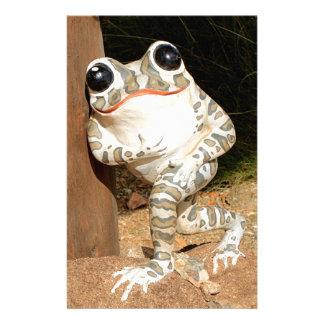 Happy frog with big eyes stationery