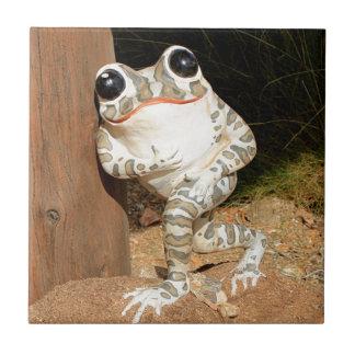Happy frog with big eyes tile