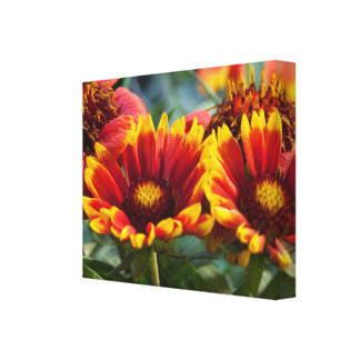 HAPPY Golden Garden: Navin Signa  Style Stretched Canvas Prints