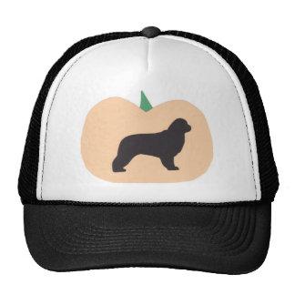 Happy Halloween Pumpkin Newfoundland Cap