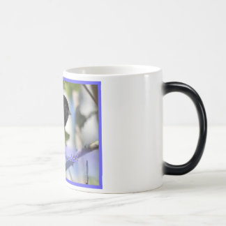 happy hanukkah happy chanukah bird junco coffee mugs