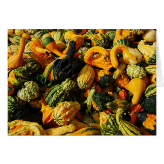Happy Harvest Gourds Greeting Card