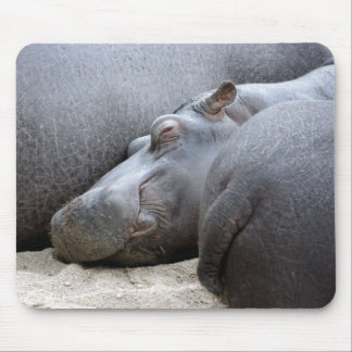 Happy hippo mousemat