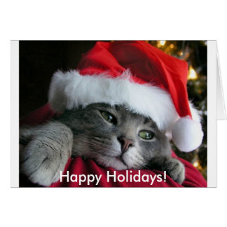 Happy Holidays! Cute Kitten Card