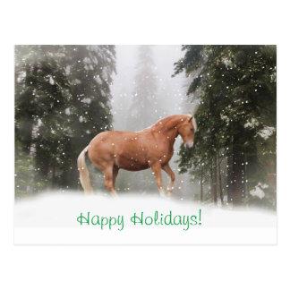Happy Holidays Draught   Horse Postcard