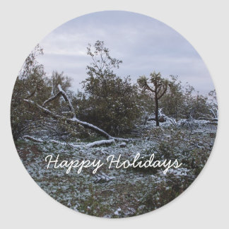 Happy Holidays from the desert Classic Round Sticker