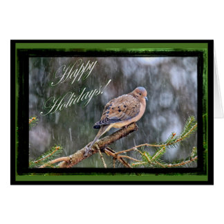 Happy Holidays Greeting Card - Mourning Dove
