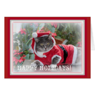 Happy Holidays Greeting Card with Cat