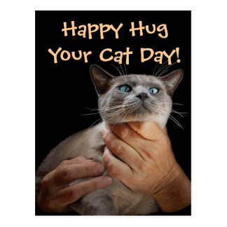 Happy Hug Your Cat Day! Postcard