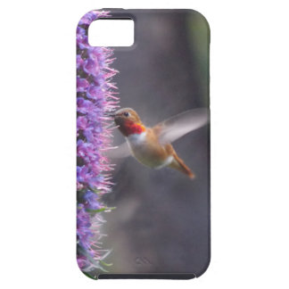 Happy hummingbird case for the iPhone 5