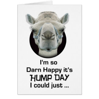 Happy Hump Day Funny Camel Spit Greeting Cards