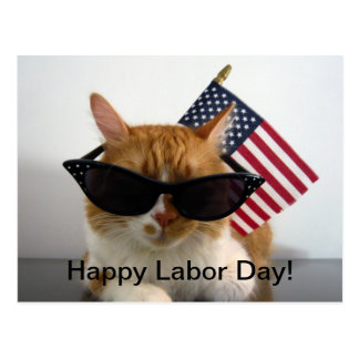 Happy Labor Day Cool Cat with Flag Postcard