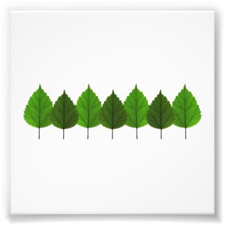 Happy Little Green Tree Leaf Forest Photo Print