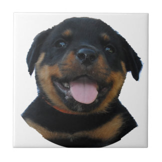 Happy Male Rottweiler Puppy Ceramic Tile