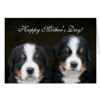 Happy Mother's Day Bernese Puppies greeting card