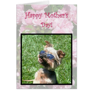 Happy Mother's Day Cool Yorskshire Terrier card